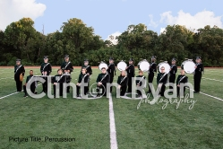 Percussion watermark